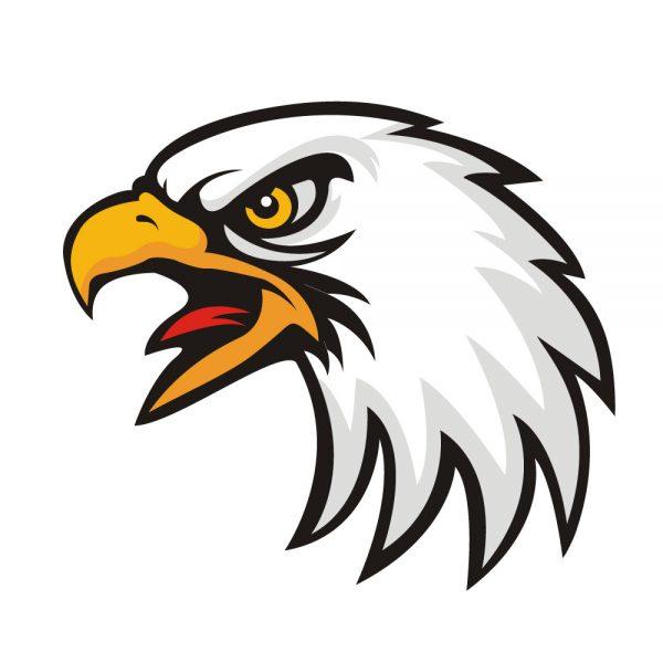 eagle vector, free eagle vector, eagle vector, eagle face vector