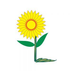 sunflower vector, free sunflower vector, sunflower vector simple, flower, download
